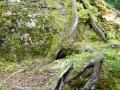 Parc des chutes du Calvaire