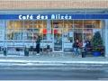 Promenades Hochelaga-Maisonneuve